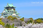 AJ5SQ JAPAN SHIRAKAWAGO SAKURA with SUMIDA RIVER CRUISE SAVER PLUS 7H/5M 2017: Apr 05 BY: SINGAPORE AIRLINES