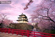 AJ4SQ JAPAN HONSHU SAKURA WITH KIMONO SAVER 7H/5M 2019: 25 MAR // 01 APR BY: SINGAPORE AIRLINES